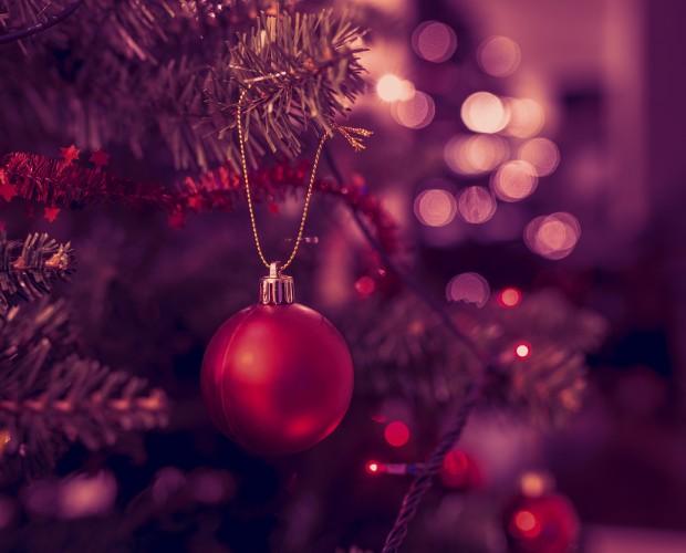 TCF_Christmas Website Header